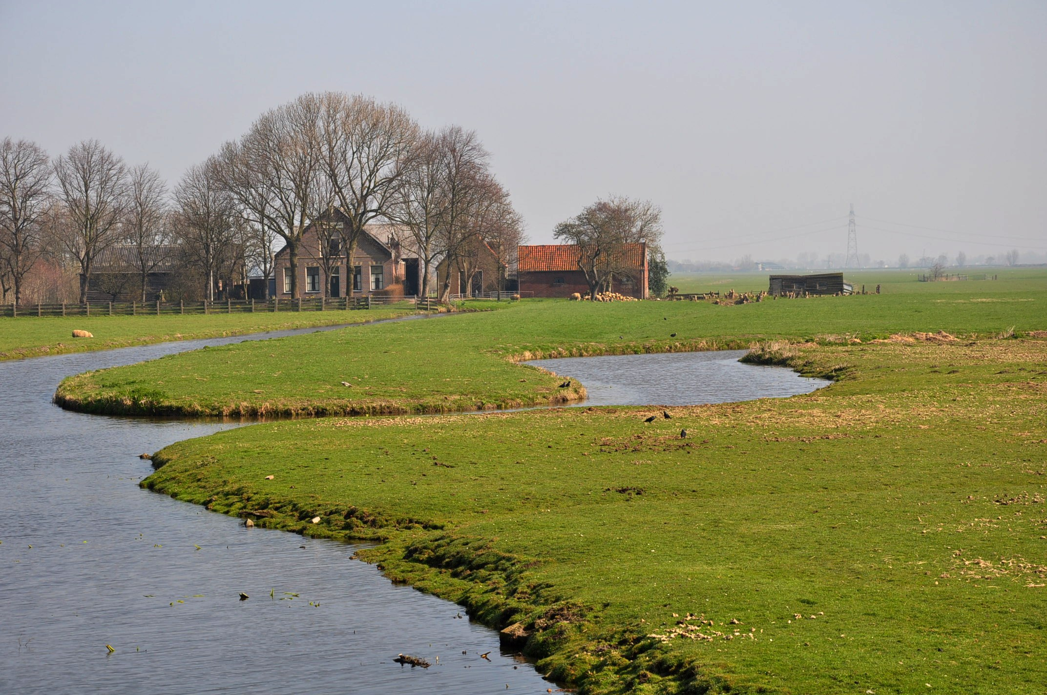 The Achthoven Polder in the municipality of Leiderdorp (a few km east of Leiden, South Holland, Netherlands)